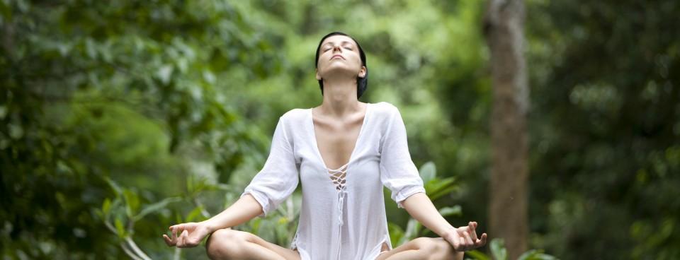 About Explore Yoga